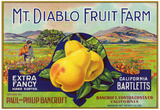 Bancroft, California, Mt. Diablo Fruit Farm Brand Pear Label Print
