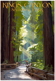 Kings Canyon National Park, California - Pathway and Hikers Posters