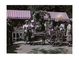 Sicilian Donkey Cart Giving Rides at an Annual Flower Market Fete Photographic Print by Clifton and Edwin Adams and Wisherd