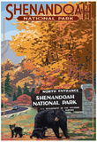 Shenandoah National Park, Virginia - Black Bear and Cubs at Entrance Posters