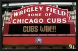 Cubs Win! Prints