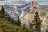Half Dome and Pine Trees in the Foreground Photographic Print by Greg Winston