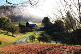 A Farm on a Winding Rural Road on a Foggy Autumn Morning Stampa fotografica di Robbie George
