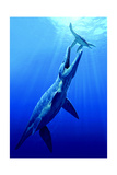 A Pliosaur Attacks a Plesiosaur Giclee Print by Raul D. Martin