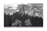 Half Dome Mountain Behind a Forest Fotografisk tryk af Greg Winston
