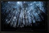 Imagination Keep Your Eyes on the Stars and Your Feet on the Ground Prints