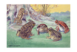 A Variety of Frogs Congregate at the Roots of a Tree Stump Giclee Print by Hashime Murayama