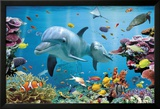 Tropische Unterwasserwelt Kunstdrucke