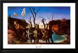Łabędzie odbijające się w wodzie jako słonie, ok. 1937 Plakaty autor Salvador Dalí