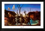 Zwanen met olifanten als spiegelbeeld in het water, ca.1937 Poster van Salvador Dalí