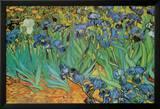 Garden of Irises (Les Irises, Saint-Remy), c. 1889 Print van Vincent van Gogh