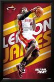 LeBron James Miami Heat Poster