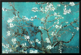 Vincent Van Gogh Turquoise Almond Branches in Bloom, San Remy Art Poster Print Photo
