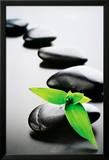 Zen Steine - Grün Kunstdrucke