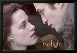 Twilight (Video Release) Poster