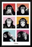 Les chimpanzés pop art Poster