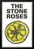 The Stone Roses (Lemon) Obrazy