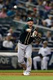 Jun 3, 2014, Oakland Athletics vs New York Yankees - Josh Donaldson Photographic Print