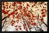 Blätterlose Äste und rote Ahornblätter Foto