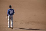 Jun 14, 2014, Toronto Blue Jays vs Baltimore Orioles - Jose Bautista Photographic Print by Jonathan Ernst