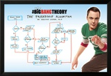 Big Bang Theory - Friendship Algorithm Posters