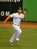 Jun 3, 2014, Tampa Bay Rays vs Miami Marlins - Giancarlo Stanton Photographic Print by Mike Ehrmann