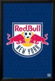 MLS New York Red Bulls Logo Foto