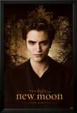 Twilight - Chapitre 2: tentation Affiches