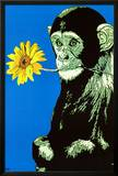Monkey With Flower Poster by  Steez