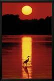 Hank Gans (Sunset in the Florida Keys) Art Poster Print Posters