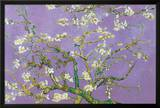Vincent Van Gogh Almond Blossoms Lavender Art Print Poster Prints