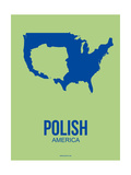 Polish America Poster 3 Prints by  NaxArt