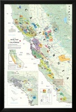 California Wine Map Poster Poster
