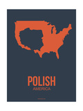 Polish America Poster 2 Posters by  NaxArt