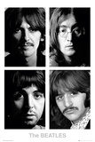 The Beatles - White Album Affiche