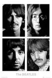 The Beatles - White Album Affiche