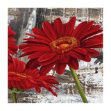 Red Gerberas II Posters by Jenny Thomlinson