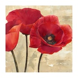 Red Poppies II Poster by Cynthia Ann