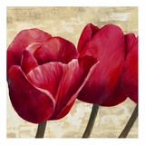 Red Tulips II Posters by Cynthia Ann