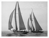 Sailboats Race during Yacht Club Cruise Prints by Edwin Levick