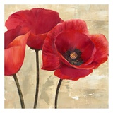 Red Poppies II Posters by Cynthia Ann