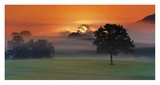 Foggy Landscape at Sunrise Posters by Frank Krahmer