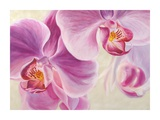 Purple Orchids Art by Cynthia Ann