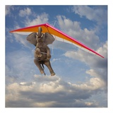 Flying Elephant Print by John Lund
