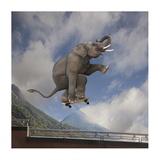 Elephant skateboarding Art by  Lund-Roeser