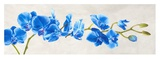 Blue Orchid Print by Shin Mills