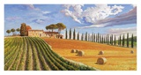 Colline toscane Posters by Adriano Galasso