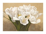 Tulipes Blanches Prints by Leonardo Sanna