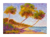 Isla Verde Palms Posters by Gail Wells