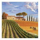 Colline Toscane Print by Adriano Galasso